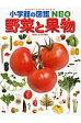 野菜と果物   /小学館/板木利隆