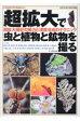 超拡大で虫と植物と鉱物を撮る 超拡大撮影の魅力と深度合成のテクニック  /文一総合出版/日本自然科学写真協会