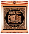ERNIE BALL Everlast Coated Phosphor Bronze Acoustic Strings