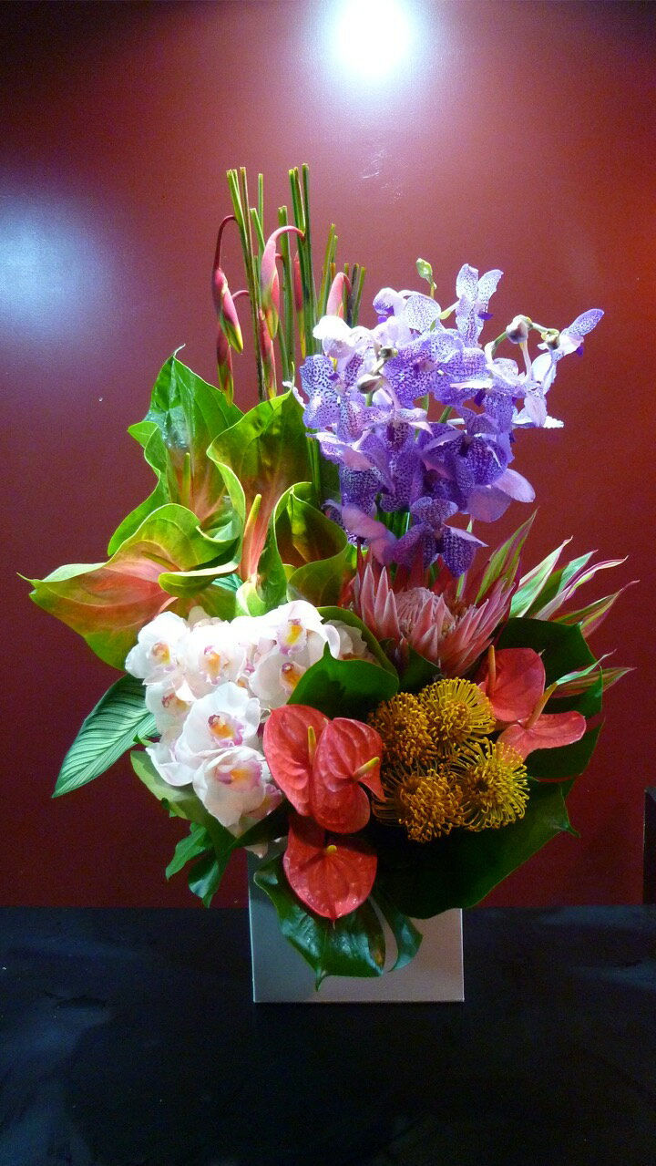 プレゼント 珍しい花 歓迎 送迎 記念日
