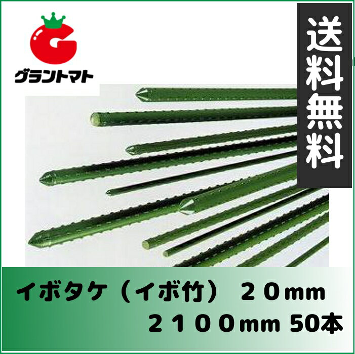 【セキスイ樹脂】イボタケ(イボ竹) 20mm 2100mm パック売り50本入り【送料無料】