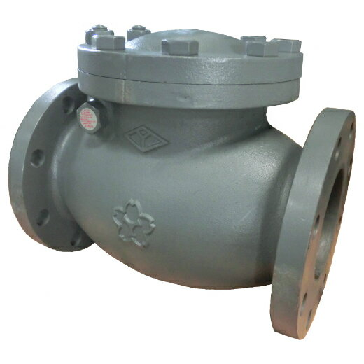 大和バルブ 鋳鉄バルブ スイングチェッキバルブ F10CE-250A