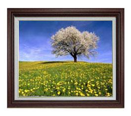 春-桜と菜の花- F12サイズ 【油絵 直筆仕上げ】【額縁付】 油彩 風景画 オリジナルインテリア絵画 風水画 ブラウン額縁 757×656mm 送料無料