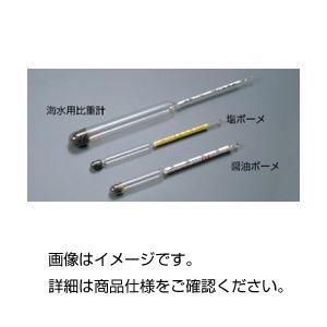 (まとめ)ボーメ比重計 醤油ボーメ【×10セット】