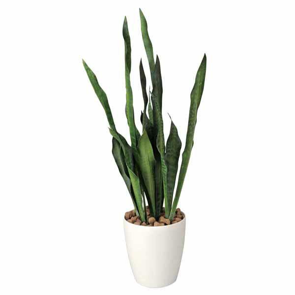 光触媒 観葉植物 インテリア 人工植物 フェイクグリーン アートグリーン 造花 グリーン 人工観葉植物 おしゃれ 玄関 観葉植物 オフィス 贈り物 ディスプレイ 店舗 お祝い リビング ダイニング プレゼント 引っ越し祝い サンセベリア