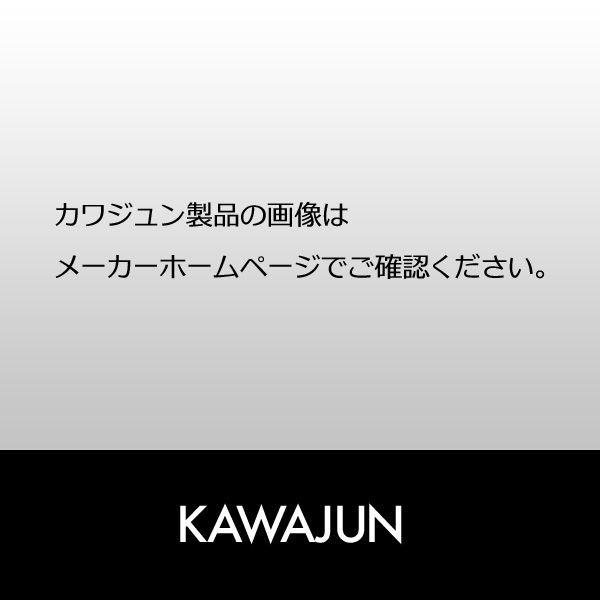 『送料無料』KAWAJUN カワジュン 表札一体型インターホンカバーネーム入(LED照明付) GP-120-XT-32-N