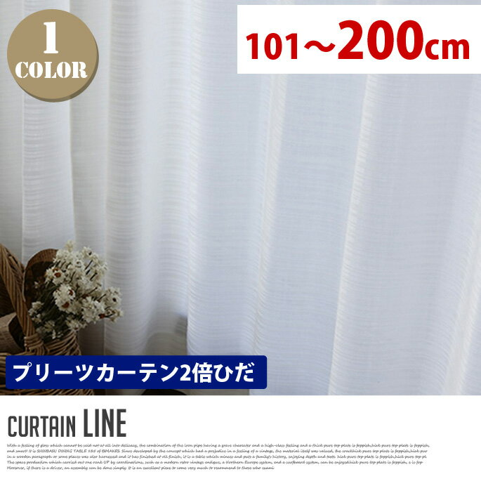 Line(ライン) プリーツカーテン【2倍ひだ】 エレガントスタイル (幅:101-200cm)