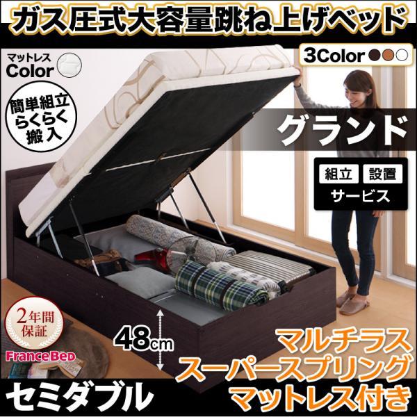 送料無料 組み立て設置付き 跳ね上げベッド セミダブル ガス圧式 棚付き コンセント付き 組立簡単 Free-Gate フリーゲート マルチラススーパースプリング付き 縦開き セミダブルベッド 深さグランド ベッド べット ベッド下収納 リフトベッド 宮付き 収納付ベッド