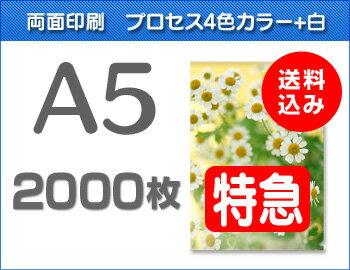 【特急便】A5クリアファイル2000枚(単価39円)