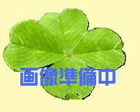 『カード対応OK!』TOTO RE01シリーズ【REAS01BA】セットアクアオート(自動水栓)【smtb-TD】【saitama】