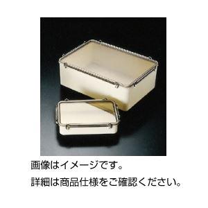 ◇(まとめ)タイトボックス No55600ml【×10セット】※他の商品と同梱不可