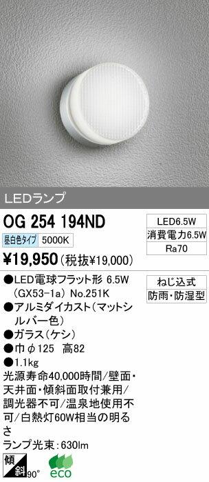 オーデリック エクステリアライト ポーチライト 【OG 254 194ND】 OG254194ND