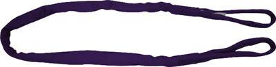 東レ インターナショナル  シライ マルチスリング HE形 両端アイ形 5.0t 長さ9.5m HE-W050X9.5 [A020124]