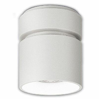 【代引手数料無料】遠藤照明 LEDZ HIGH-BAY series シーリングダウンライト ERG5339W