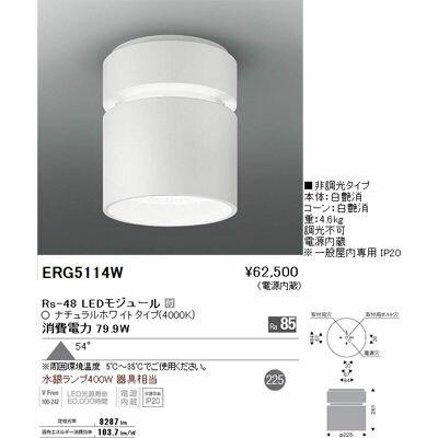 【代引手数料無料】遠藤照明 LEDZ HIGH-BAY series シーリングダウンライト ERG5114W