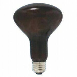 アサヒ 【お買い得品 100個セット】 耐熱透明カラー球(内面フロストタイプ) R80 110V60W 口金:E26 アンバーフロスト R80 E26 110V-60W(AT)_100set