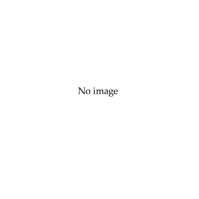 【お取り寄せ】EPSON 排紙バスケット|PX20HBKT