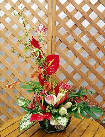 センス良く舞うお花たちの宴