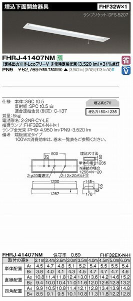 FHRJ-41407NM-PN9 【受注生産品】 東芝 非常用照明器具 532P15May16 lucky5days