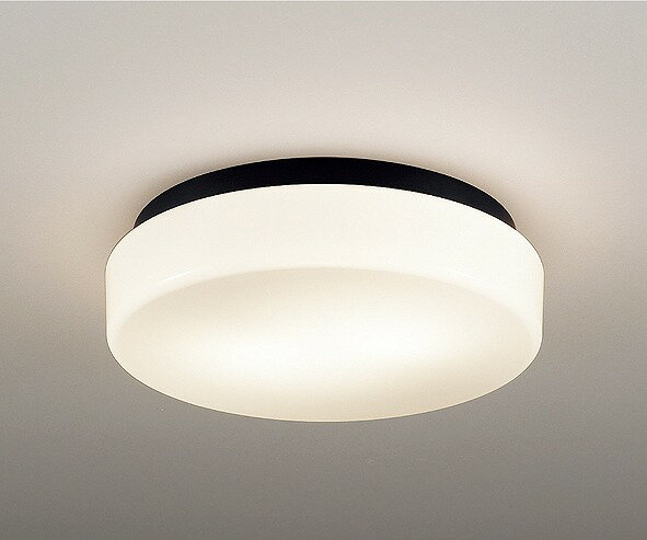 ERG5491B 遠藤照明 軒下用シーリングライト LED
