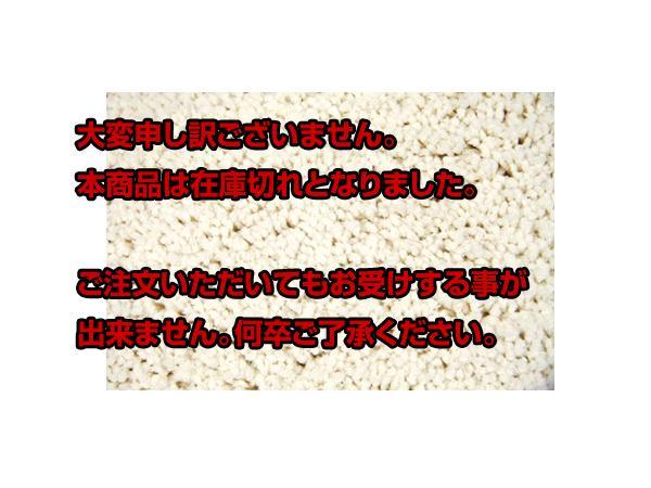 レビュー投稿で次回使える2000円クーポン全員にプレゼント 直送 インテリア ラグ カーペット モコ アイボリー 200×250 【代引き不可】 【インテリア インテリア小物・ファブリック】