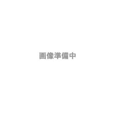 レビュー投稿で次回使える2000円クーポン全員にプレゼント マスプロ 電界強度計 MODEL LF51 【生活家電\イヤホン・AV関連\テレビ・リモコン関連】