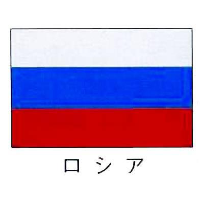 【業務用】旗 世界の国旗 ロシア 140×210 【 キャンセル/返品不可 】  【 送料無料 】