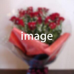 【あす楽対応_北海道】 おまかせ花束16,200円