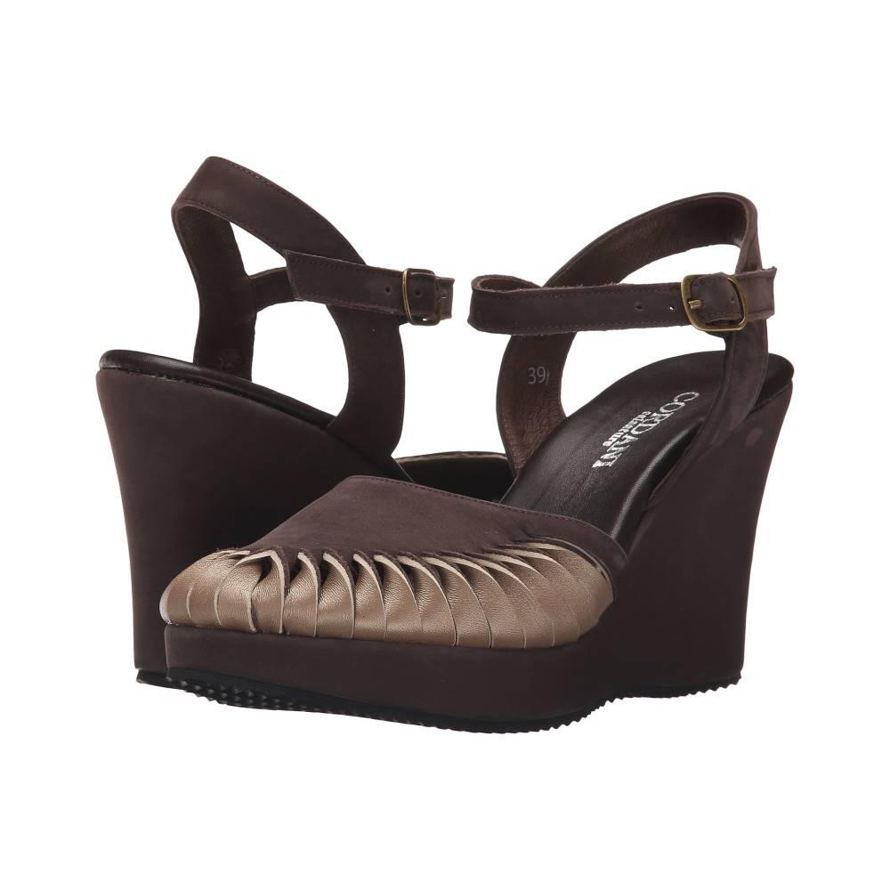 コルダニ レディース シューズ・靴 サンダル・ミュール【Westbury】Brown/Taupe