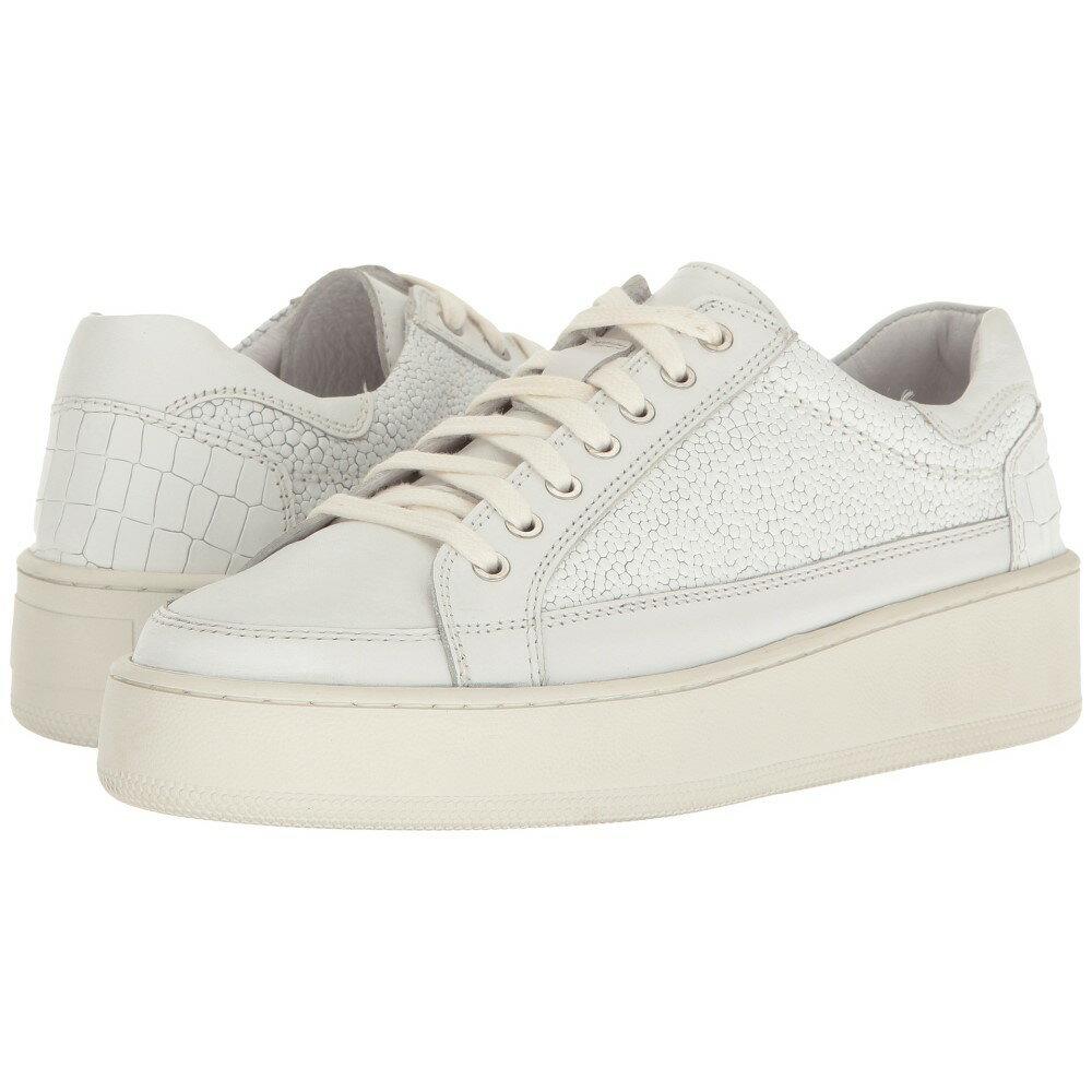 フリーピープル レディース シューズ・� スニーカー�Letterman Sneaker】White