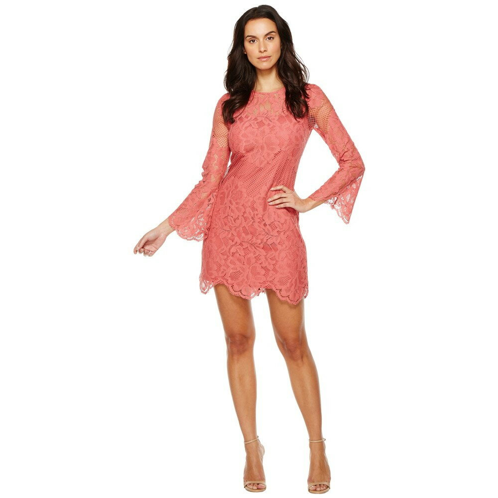 ドナ モルガン レディース ワンピース・ドレス ワンピース【A-Line Lace Dress】Clay Red
