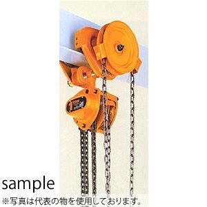 キトー(KITO) チェーンブロックマイティM3形 TSG形ギヤードトロリ結合形 CBSG100 定格荷重(t):10
