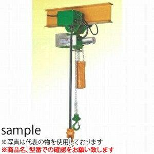 二葉製作所 ミニパワー 電気チェーンブロック 単相100V  電気トロリ付CWT120K 3M 4PBS