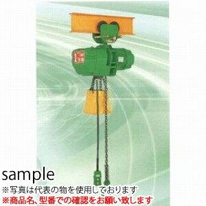二葉製作所 電気チェーンブロックFHP型FHP-1/2T 3M 2PBS