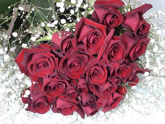 告白 定番の赤バラ20本+カスミ草花束