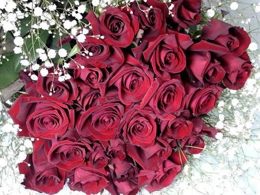 告白 定番の赤バラ30本+カスミ草花束祝15000突破