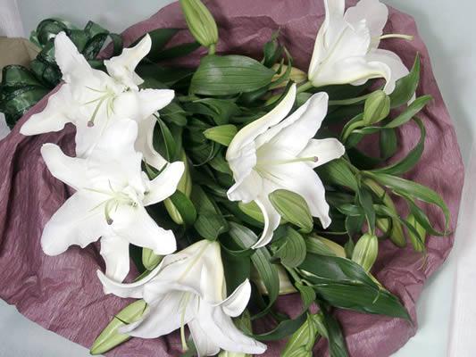 告白 カサブランカの花束