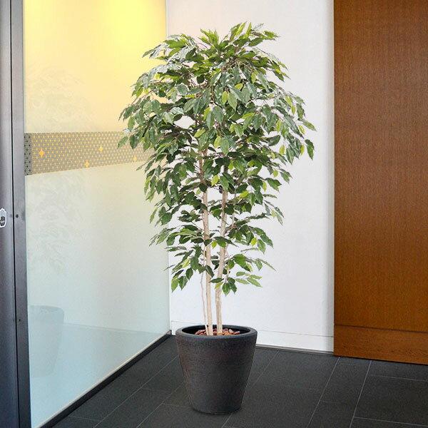 【人工植物】ベンジャミン・ライト全高3.0m(フィカス・ベンジャミナ)(ライトグリーン/明るい葉)(特大/大型サイズ)(フェイクグリーン/インドアグリーン/造花・観葉植物/人工樹木/人工観葉植物)