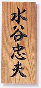 表札 木 木製表札 ウッド 戸建 天然木(けやき・彫込)サイズ:210×87×30mm【送料無料】