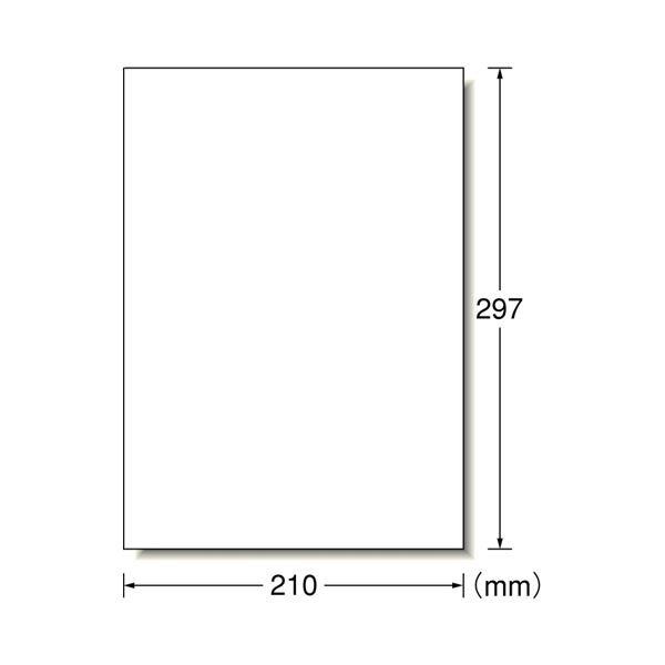 (まとめ) エーワン スーパーエコノミーシリーズ プリンター用ラベル A4 ノーカット L1AM500 1箱(500シート) 【×5セット】