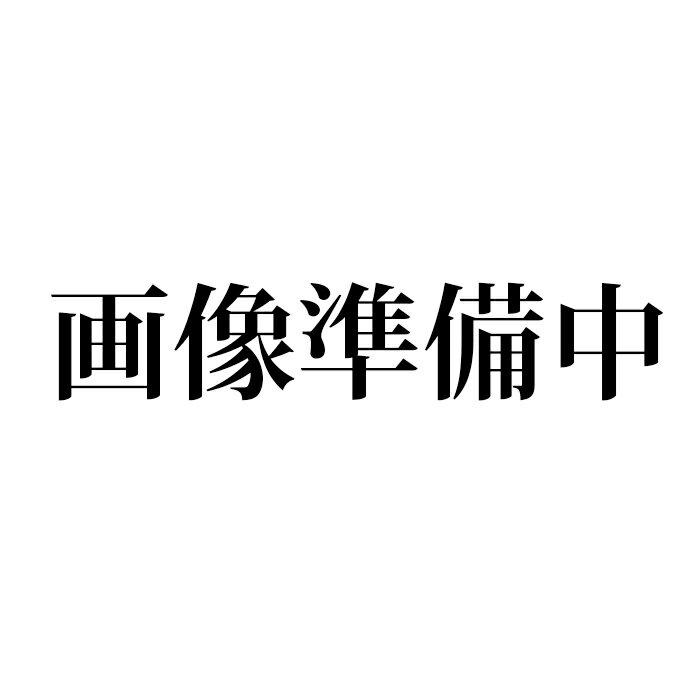 【新品】ARNOLD&SON アーノルド&サン 1LCMP