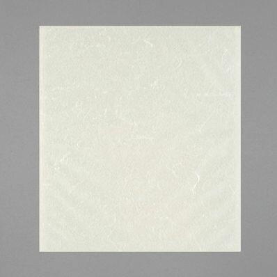 雲龍和紙袋 Z-88(500枚×8) 180×200mm 脱酸素剤対応袋【本州/四国/九州は送料無料】