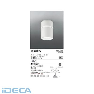 DS76924 シーリングダウンライト/ベース/LED3000K/Rs24