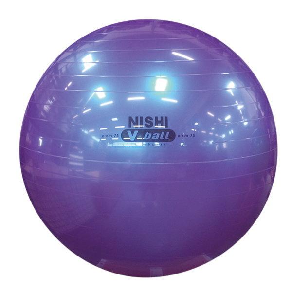 ニシスポーツ ノンバーストVボール NT5874C 直径75cm メタリックパープル