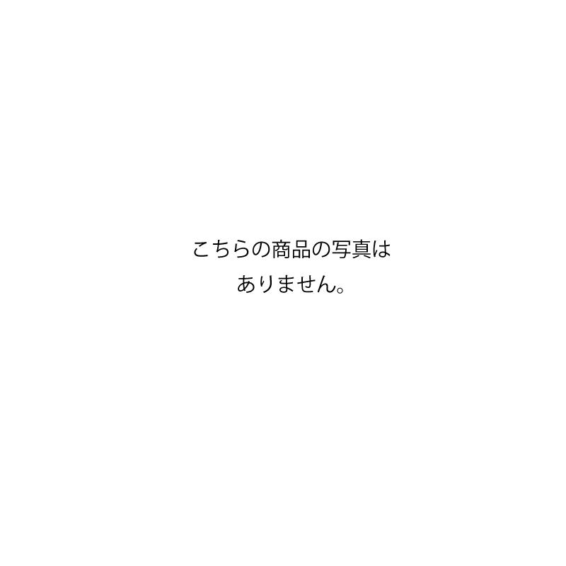 ★ポイント5倍中★【初田製作所 ハツタ】据置型小型消火器格納箱(ステンレス製)[HSMC-1HL(ヘアライン)]