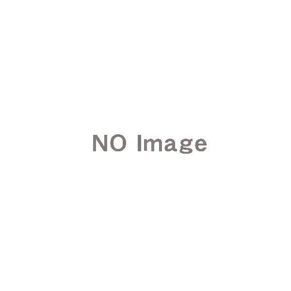 ★�イント5�中★�注生産�★�アイホン】集�玄関機用パ�ル�シル�ー [VHW-2736P-S]