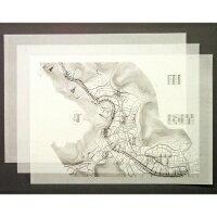 桜井 オリカLPEX 594mm×150m 3インチ紙管 テープ 1本