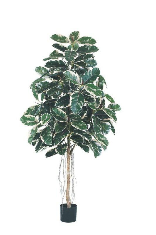 お気に入る 【送料無料】180cmラバーツリー(ナチュラルトランク)【観葉植物 造花 CT触媒/光触媒 フェイクグリーン】[D-F]