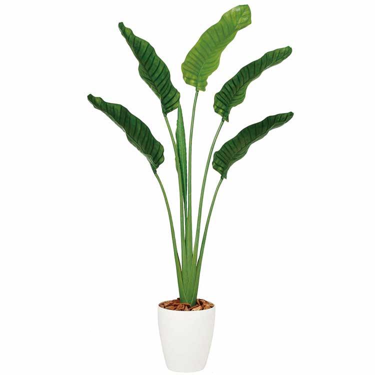 ストレリチア・オーガスタ 160cm 【観葉植物 造花 CT触媒/光触媒 フェイクグリーン】