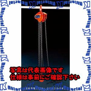 【P】【代引不可】ESCO(エスコ) 3.0tonx3.0m チェーンブロック EA987CN-3